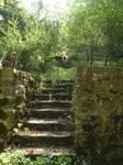 Old forgotten garden in Bergara
