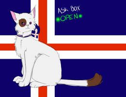 Ask box open by Ask-Cat-Iceland