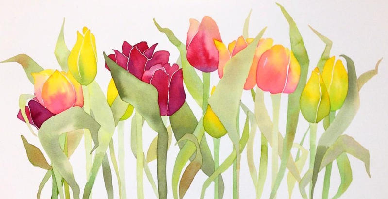 Tulips (yellow and pink)