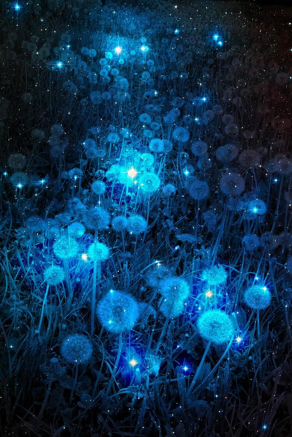 Galactic Dandelions (1) by confuzzledMia