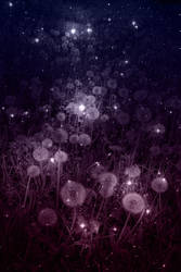 Galactic Dandelions (2)