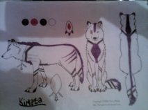 Kimaza - Fursona character sheet by Wolf-girl-Alchemist9