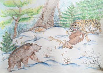 The real and cruel nature the Far East and Siberia by LiontheNorthernlands