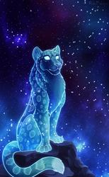 Cosmic Snowmeow