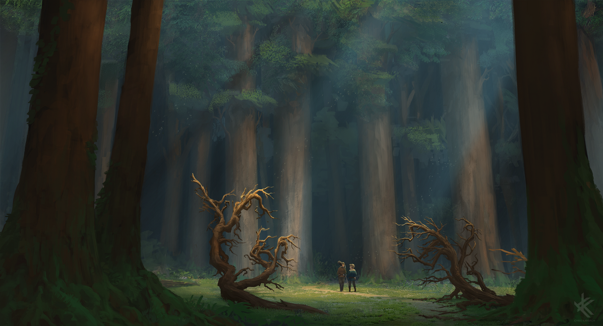Entering the Woods