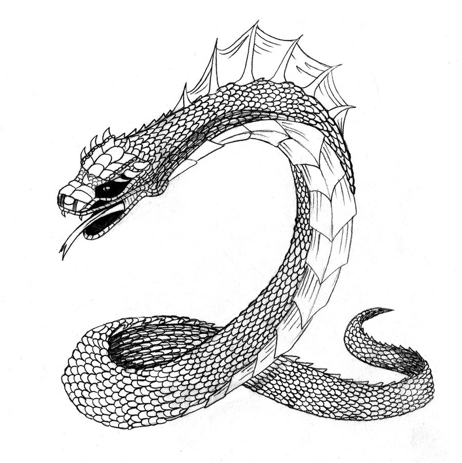 how to draw the basilisk from harry potter easy