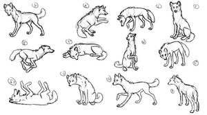 Wolf poses