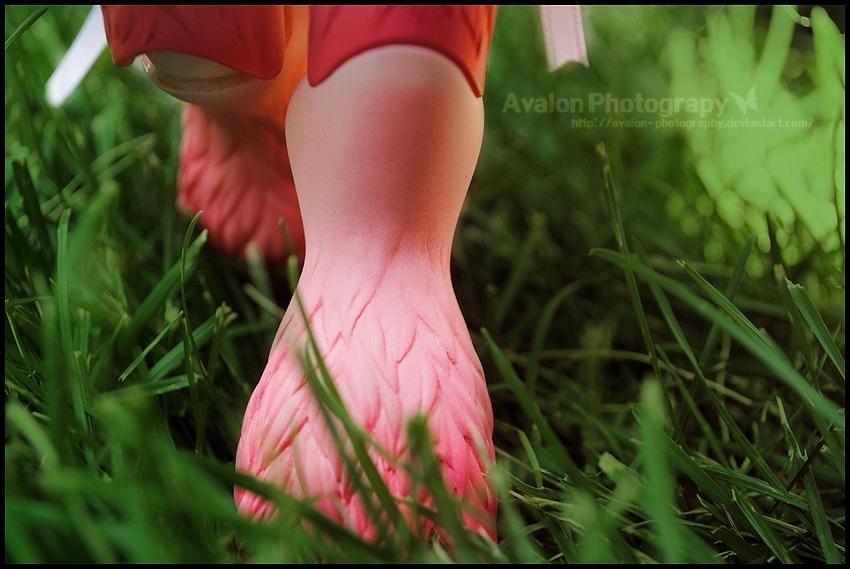 LiveinNature By Avalon Photography