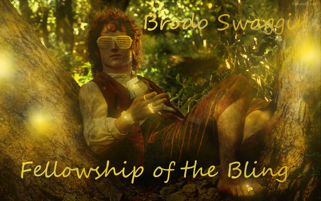 Brodo Swaggins And The Fellowship Of The Bling Fellowship of t...