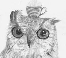 Owl grey tea by Busbi