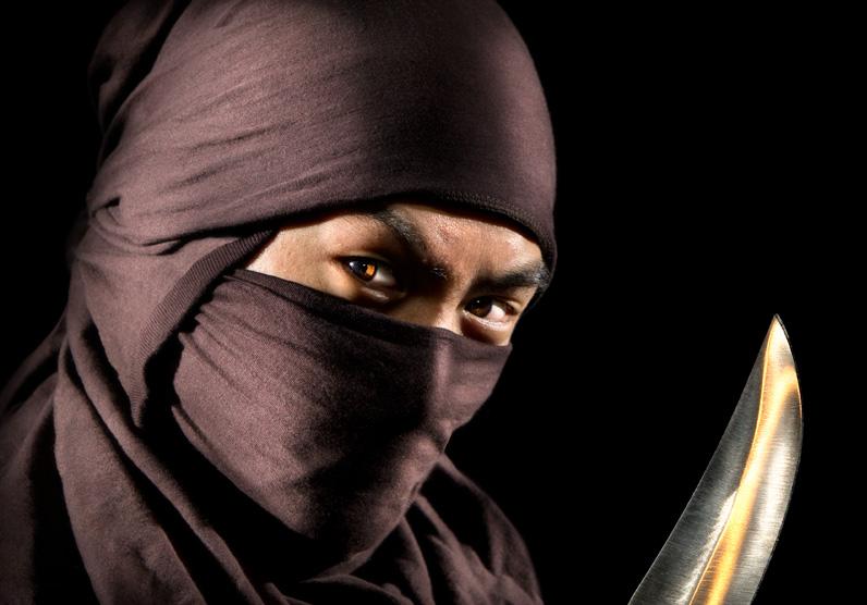 Ninja by deanbradshaw