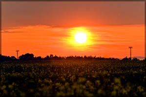 Sunset I by oktis