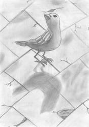 bird by nous3rnam3