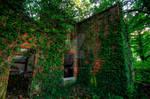 The Ruins of Newland Hall