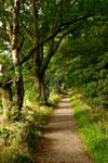 At Golden Acre Park - Leeds - UK.