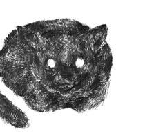 catwithin