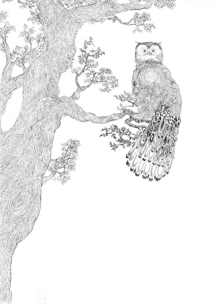 Ow owl