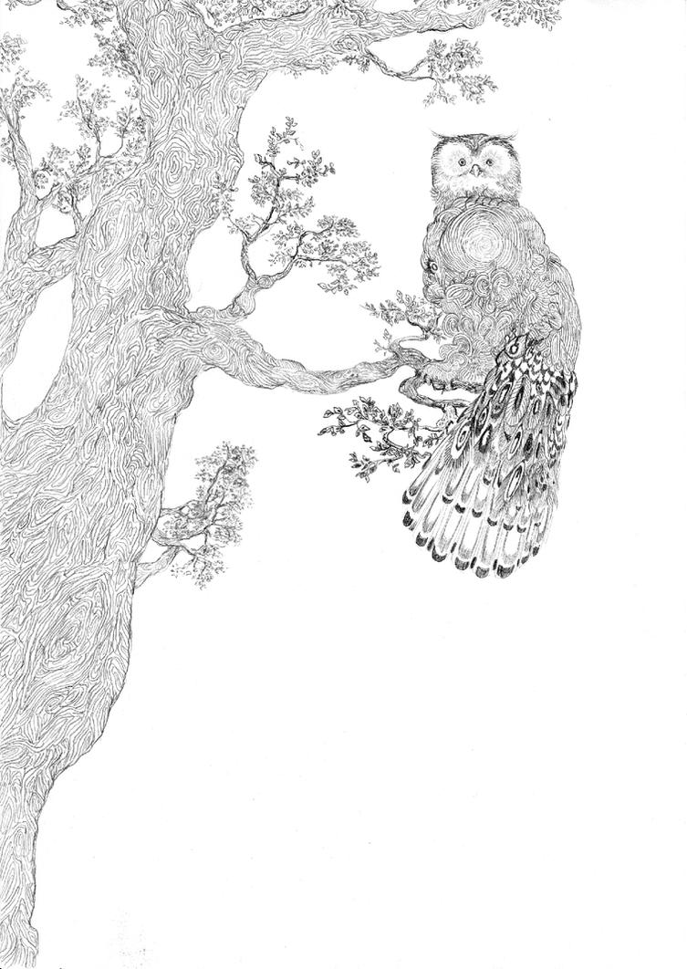 Ow owl by Alderfly