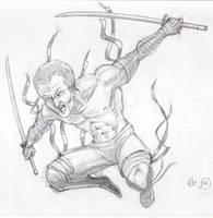 gray swordsman by INovumI
