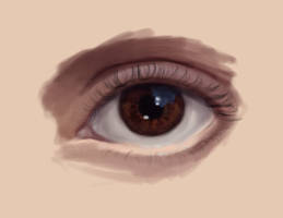 Realistic eye attempt by madnati-art