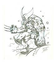 Wolverine sketch by DOUGLASDRACO