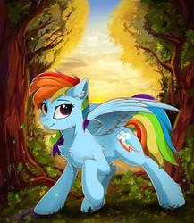 Rainbow Dash by Z-Y-C