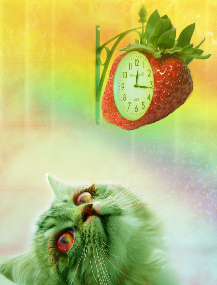 Strawberry Cat by LilaCattis