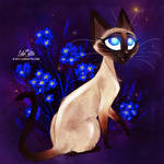 Siamese Cat (Forget me Not)