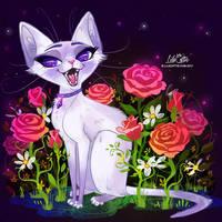 Siamese Lilac