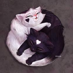Yin Yang Kittens