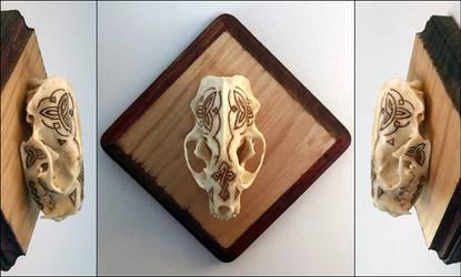 Skull Mink 001 - Celtic