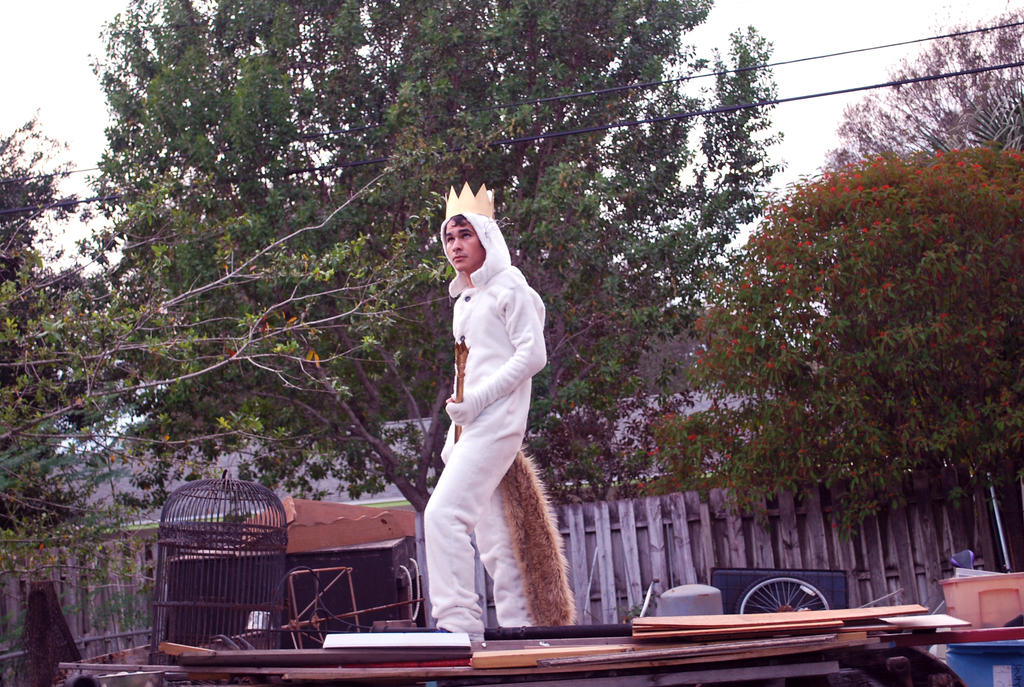 Where the Wild Things Are Halloween fun 4 by AndrewLaFish-Arts
