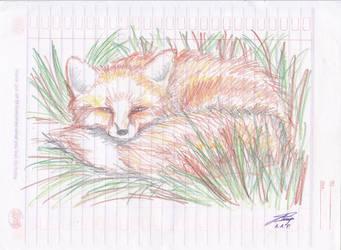 little fox by adhityano