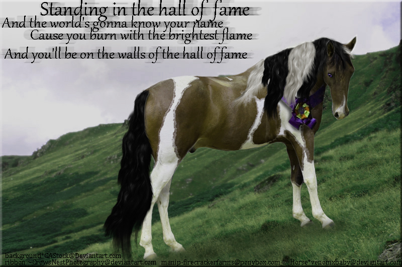 hall of fame by horse-stock