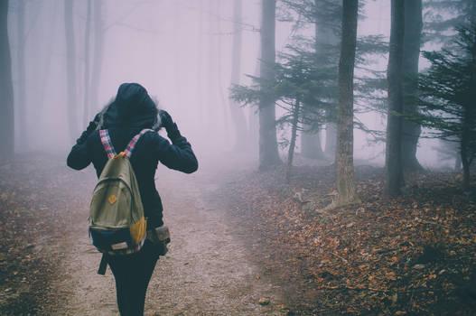 The Lucky Wanderer