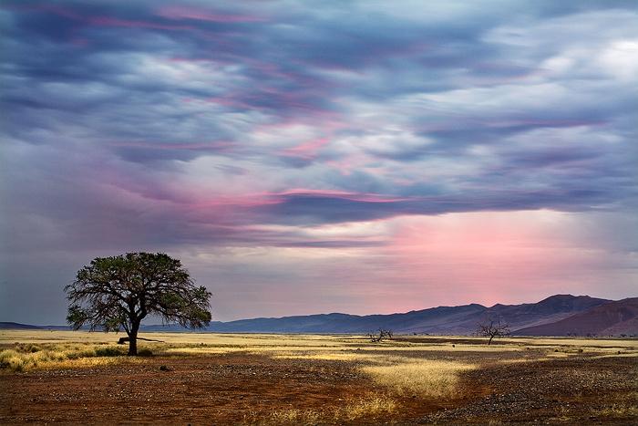 Pink Sky by Zefisheye