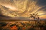Aus Vista Cloud