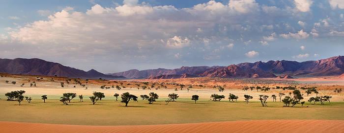 Desert Pastels