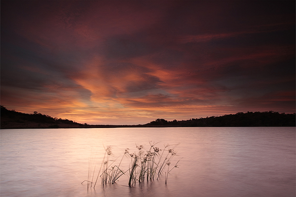 Mziki Sunrise by Zefisheye