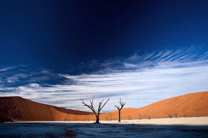 Desert dance by Zefisheye