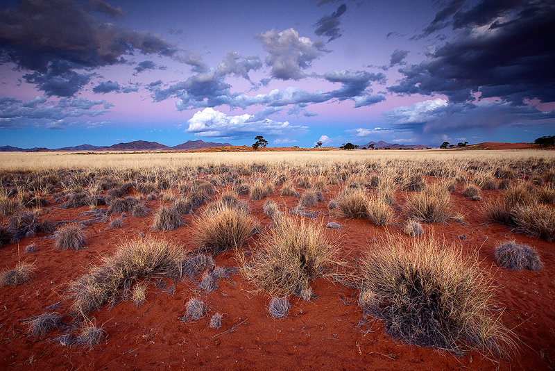 Desert twilight by Zefisheye