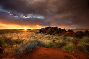 Goudkoppie sunset by Zefisheye