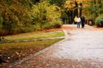 A rainy autumn day