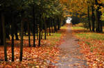A rainy autumn day 2