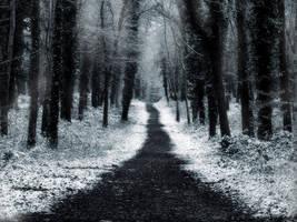 Winter Lane by Yambushi