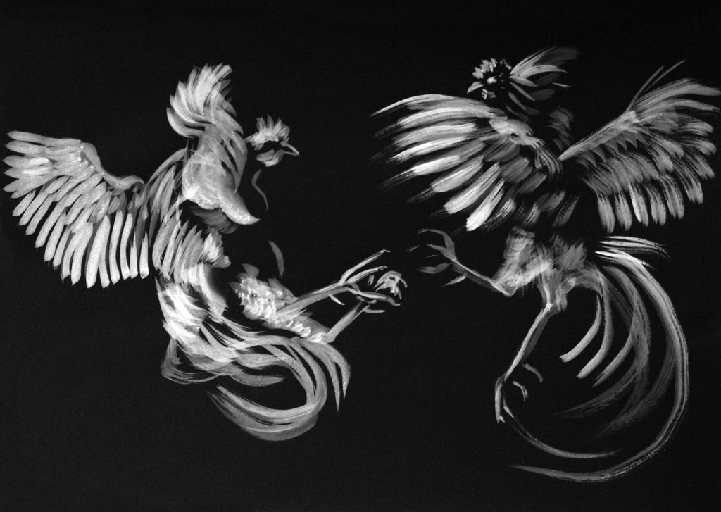 Fighting cocks BW by ColeBarrett