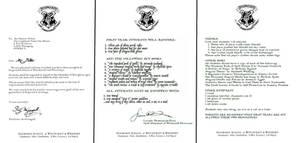 Hogwarts Acceptance Letter by decat