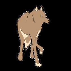 Wolf-avatar