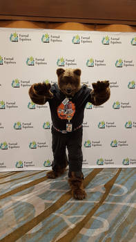 Mid-TF Were-Bear Partial Costume, standing
