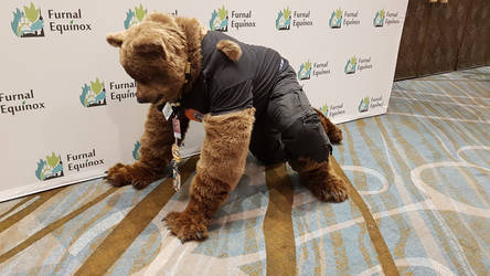 Mid-TF Were-Bear Partial Costume, crouching
